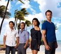 Bilder : Hawaii Five-0