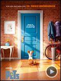 Bilder : Pets Trailer (2) DF