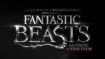 FANTASTIC BEASTS AND WHERE TO FIND THEM Trailer Announcement