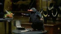 Phantastische Tierwesen und wo sie zu finden sind Trailer (10) OV