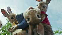 Peter Hase Trailer DF