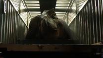 Jurassic World 2: Das gefallene Königreich Teaser (3) OV