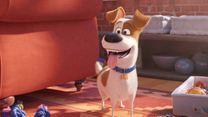 Pets 2 Trailer DF