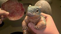 Jurassic World: Neue Abenteuer Trailer (2) DF