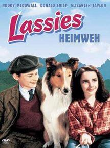 Heimweh Film