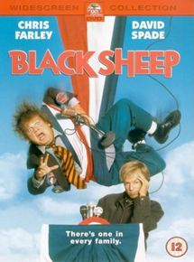 Black Sheep - Schwarzes Schaf mit weißer Weste