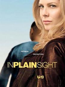 In Plain Sight - In der Schusslinie