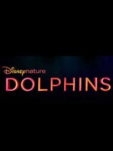 Dolphins Trailer OV