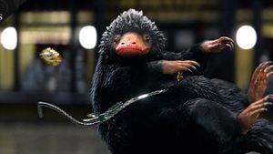 """Quiz zu """"Phantastische Tierwesen 2"""": Wie gut kennst du Niffler, Zouwu und Bowtruckle?"""