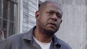 "Mafia, Drogen, Malcolm X: Forest Whitaker regiert im Trailer zu ""The Godfather Of Harlem"""