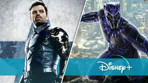 "Wakanda & die Dora Milaje in ""The Falcon And The Winter Soldier"": So geht es mit Black Panther & Co. im MCU weiter"