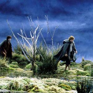 Der Herr der Ringe - Die zwei Türme : Bild Elijah Wood, Sean Astin