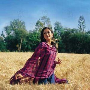 Swades - Heimat : Bild Ashutosh Gowariker