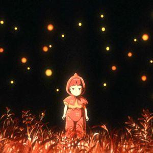 Die letzten Glühwürmchen : Bild