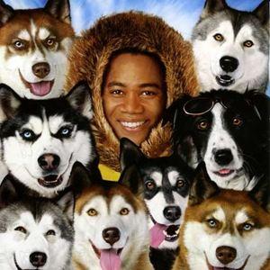 snowdogs – acht helden auf vier pfoten