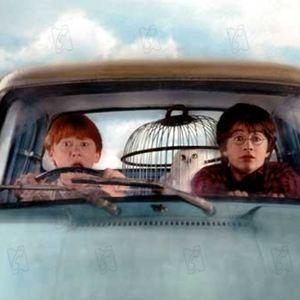 Harry potter und die kammer des schreckens schauspieler for Chambre 13 film marocain trailer