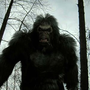 bigfoot die legende lebt