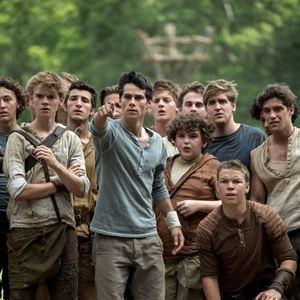 Maze Runner - Die Auserwählten im Labyrinth : Bild Blake Cooper, Dylan O'Brien, Thomas Brodie-Sangster, Will Poulter