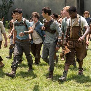 Maze Runner - Die Auserwählten im Labyrinth : Bild Dexter Darden, Dylan O'Brien, Ki Hong Lee, Thomas Brodie-Sangster