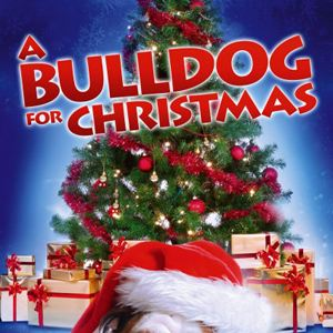 eine bulldogge zu weihnachten film 2013. Black Bedroom Furniture Sets. Home Design Ideas