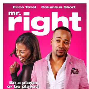 Mr. Right : Kinoposter