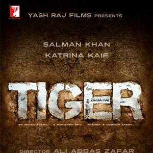 Tiger Zinda Hai : Kinoposter