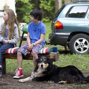 bark ranger mein hund der held film 2015. Black Bedroom Furniture Sets. Home Design Ideas