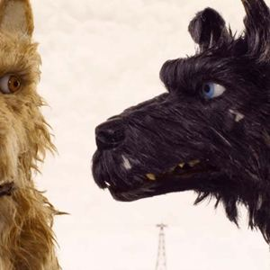 Isle of Dogs - Ataris Reise : Bild