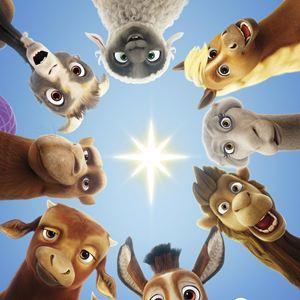 Bo und der Weihnachtsstern : Kinoposter