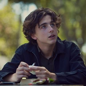 Lady Bird : Bild Timothée Chalamet