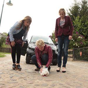 Weiber! Schwestern teilen. Alles. : Bild Astrid 'Ann' Marie Pollmann, Floriane Daniel, Winnie Böwe