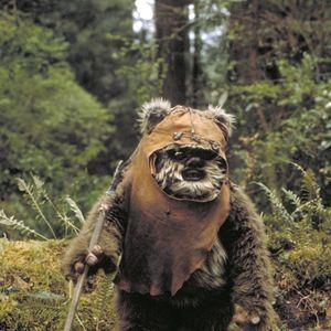 Wars Bären wars episode vi die rückkehr der jedi ritter schauspieler