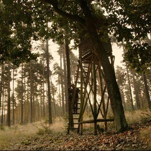 Auf der Jagd - Wem gehört die Natur? : Bild