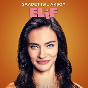 Ailecek Saskiniz : Kinoposter
