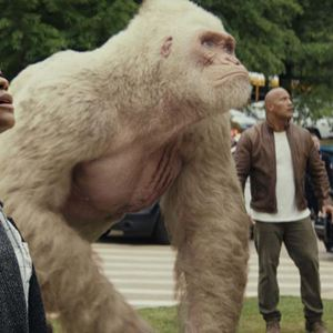 Rampage - Big Meets Bigger : Bild Dwayne Johnson, Naomie Harris