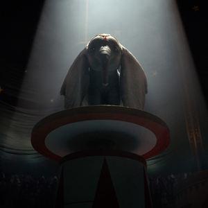 Dumbo Kino Fsk