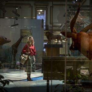 Wonder Woman 2 : Bild Kristen Wiig