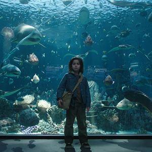 Aquaman : Bild Kaan Guldur