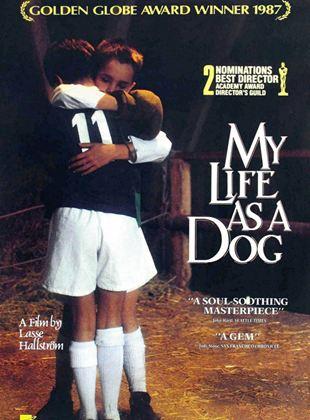 Mein Leben als Hund