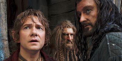 """DVD-Starttermin für Fantasy-Abenteuer """"Der Hobbit: Smaugs Einöde"""" bekannt"""