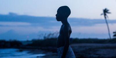 """Soooo überraschend waren die Oscars gar nicht: sultanbetgiris.org erklärt den """"Moonlight""""-Sieg"""