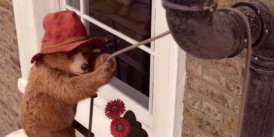"""""""Paddington 2"""": Im neuen deutschen Trailer ist der knuffige Bär los"""