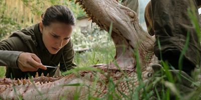 """""""Auslöschung"""": Natalie Portman im ersten Trailer zum Thriller vom """"Ex Machina""""-Regisseur"""