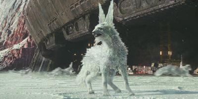 """Cooler als die Porgs: Video und Infos zu den Kristallfüchsen aus """"Star Wars 8"""""""