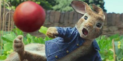 """Mensch vs. Kaninchen: Im neuen Trailer zu """"Peter Hase"""" wird der Garten zum Schlachtfeld"""