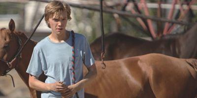 """""""Lean On Pete"""": Im ersten berührenden Trailer freundet sich Charlie Plummer mit einem Pferd an"""