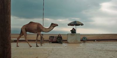 """Mit einem Kamel am bewachten Grenzübergang: Neuer Trailer zum Oscarfavoriten """"Foxtrot"""""""