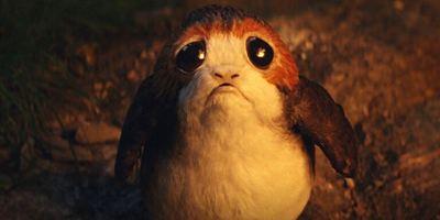 """Porg-Sorgen: Die niedlichen Vogelviecher sorgten bei """"Star Wars: Die letzten Jedi"""" für jede Menge Arbeit"""