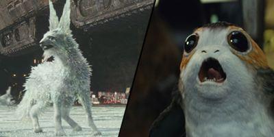 """Bestätigt: """"Die letzten Jedi"""" hat mehr verschiedene Kreaturen als jeder andere """"Star Wars""""-Film"""