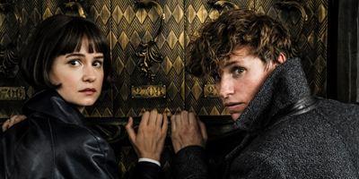 """Weltreise mit """"Phantastische Tierwesen"""": In jedem der fünf """"Harry Potter""""-Spin-offs geht es in eine andere Stadt"""